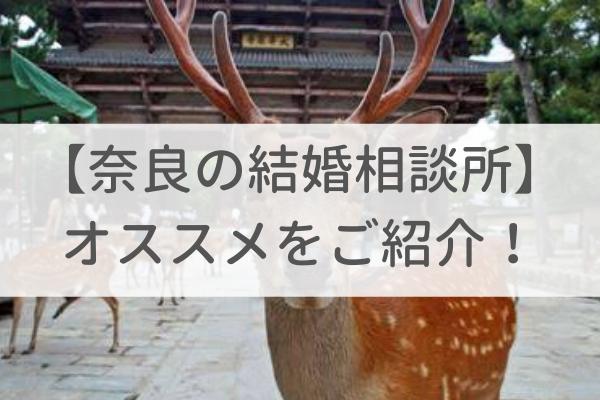奈良でおすすめの結婚相談所6社を専門家が比較紹介します